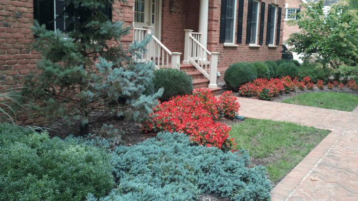Landscaping For In Front Of House : Landscaping plants for front of house images